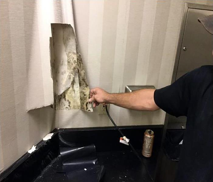 Fort Walton Beach Commercial Mold Damage