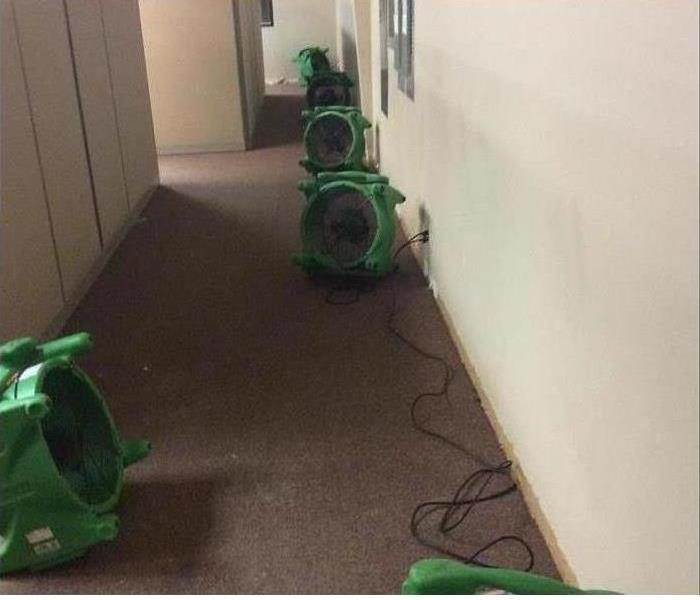 Four of our dehumidifiers and air movers in a carpeted hallway