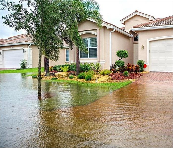 Water Damage Speedy Water Damage Solutions Just In Time For Spring Break