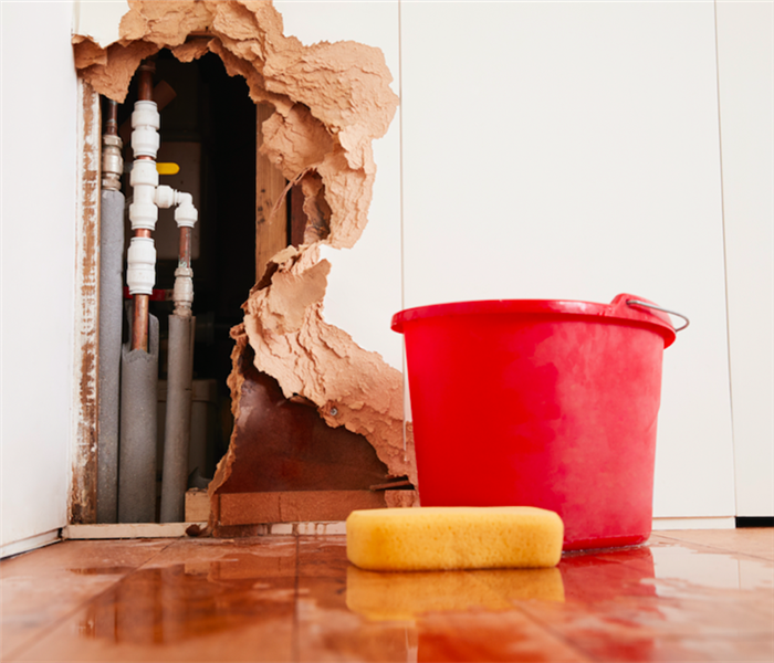 Water Damage What You Can Do About Water Damage in Your Santa Rosa Beach Home Right Now