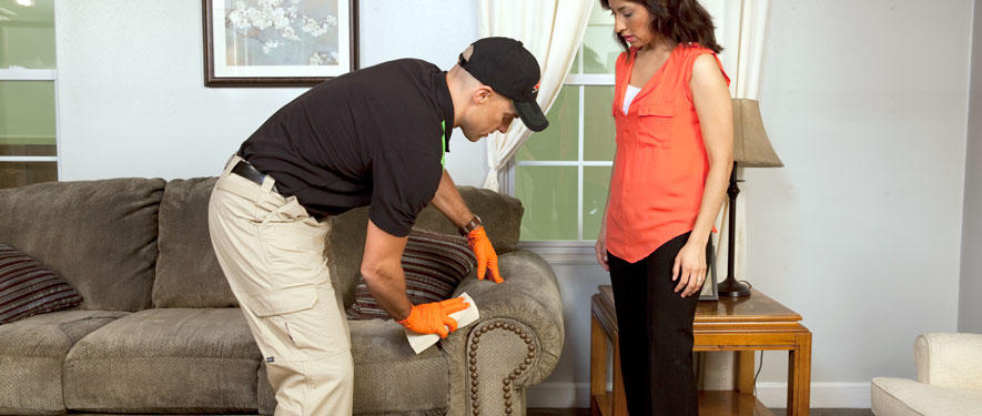 Santa Rosa Beach, FL carpet upholstery cleaning