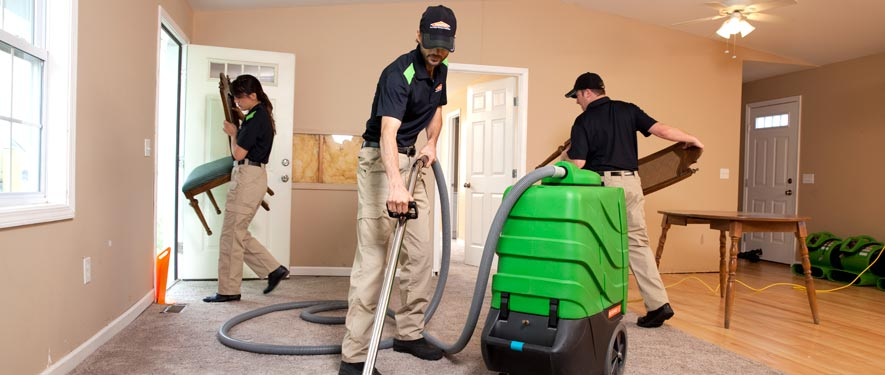 Santa Rosa Beach, FL cleaning services