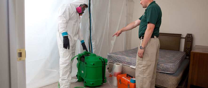 Santa Rosa Beach, FL mold removal process
